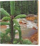 Durango Pass Wood Print
