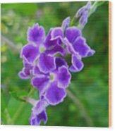Duranta Flower 2 Wood Print
