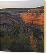 Dusk At Colorado National Monument Wood Print