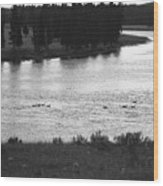 Dusk At The Yellowstone River Wood Print