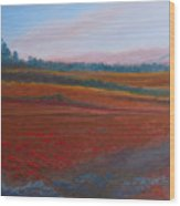 Dusk Falls On The Pumice Field Wood Print