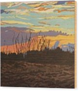 Dusk Fishing, Hutchinson Island Wood Print