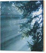 Dusk In Ashenvale Wood Print