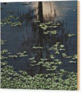 Dusk In The Swamp Wood Print