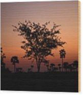 Dusky Tree Wood Print