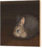 Dust Bunny Wood Print