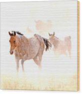 Dusty Emergence 001 Wood Print