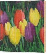 Dutch Tulips Wood Print