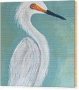 Dutchess Egret Art By Brenda Boss Wood Print