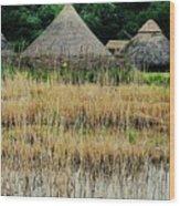 Dyflin Viking Village, Ireland Wood Print