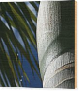 E Hawaii Aloha E Wood Print by Sharon Mau