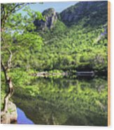 Eagle cliff Wood Print