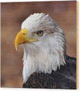 Eagle 25 Wood Print