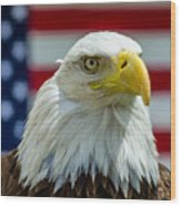 Eagle 6 Wood Print