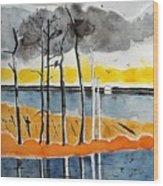 Eagle At Blackwater Wood Print
