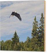 Eagle At Scott Brook II Wood Print