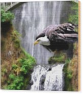 Eagle By The Waterfall Wood Print