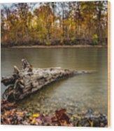 Eagle Creek Park Wood Print