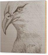 Eagle Drawing 1 Wood Print