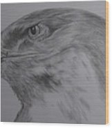 Eagle Eyed. Wood Print by Cynthia Adams