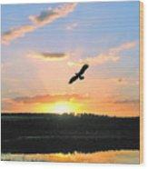 Eagle Flight Wood Print