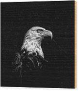 Eagle In Black And White Wood Print