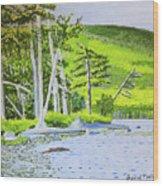 Eagle Lake, Acadia, Maine Wood Print