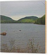 Eagle Lake Wood Print