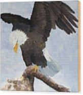Eagle Landing Wood Print