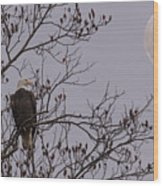Eagle Lookout Wood Print