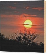 Eagle Nest Sunrise Wood Print