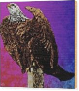 Eagle Of Wwi Wood Print
