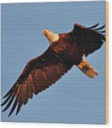 Eagle Over The Fox Wood Print