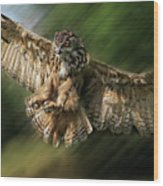 Eagle Owl Landing Wood Print