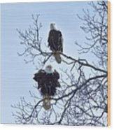 Eagle Pair Wood Print