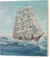 Sailing Eagle Wood Print
