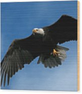 Eagle Pride Wood Print