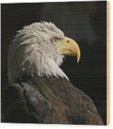 Eagle Profile 1 Original Photo Wood Print