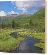 Eagle River- Alaska Wood Print