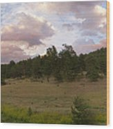 Eagle Rock Estes Park Colorado Wood Print