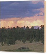 Eagle Rock Estes Park Wood Print