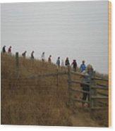 Eagle Rock Hike Wood Print