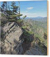 Eagle Rocks Wood Print