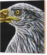 Eagle - Sa96 Wood Print