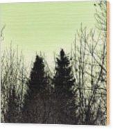Eagle Silhouette Wood Print