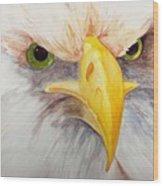 Eagle Stare Wood Print