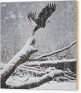 Eagle Takeoff In Snow Wood Print