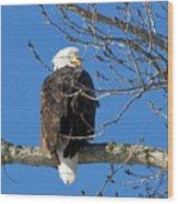 Eagle Watch Wood Print