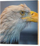 Eagle With An Attitude Wood Print by Bill Tiepelman