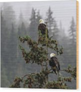Eagles On Watch 1 Wood Print